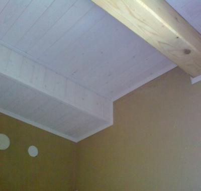 Obklady stěn a stropů